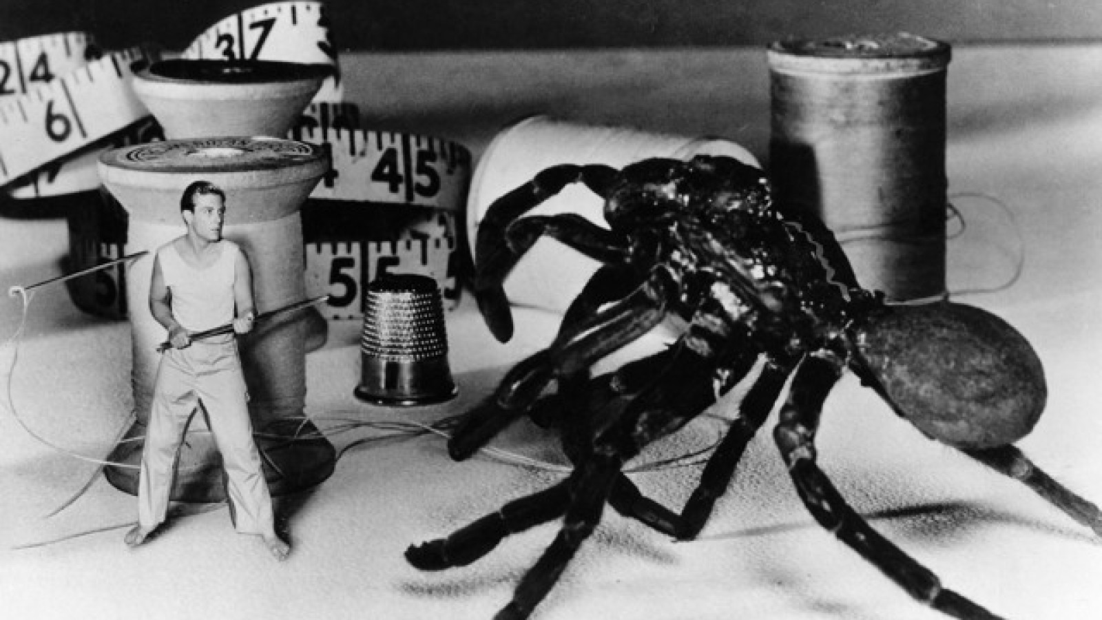 The Incredible Shrinking Man Movie Review