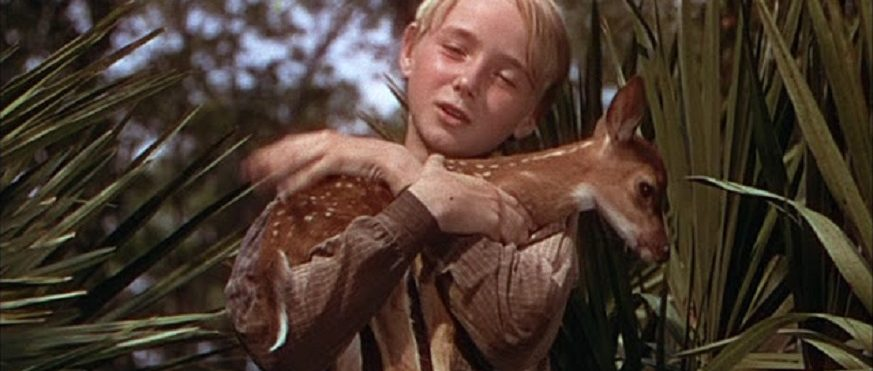 The Yearling Movie Review